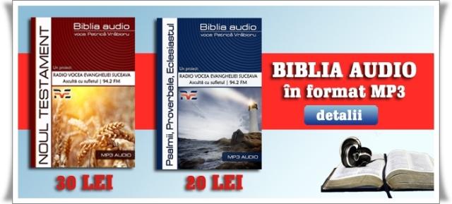 proiect biblia