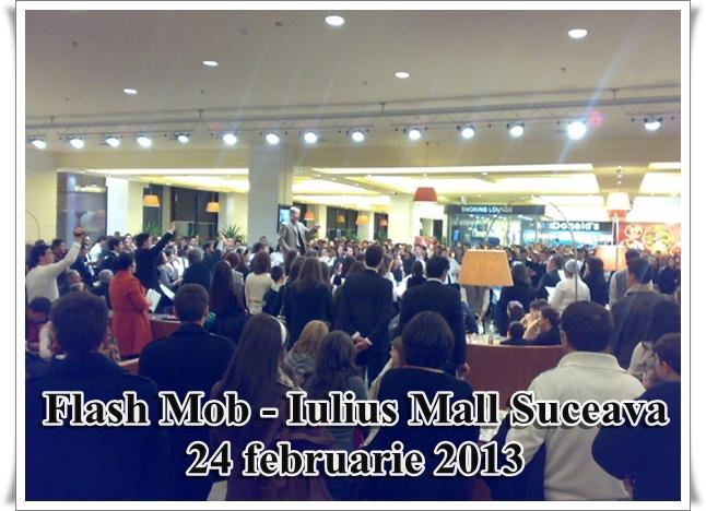 tucker flash mob Suceava