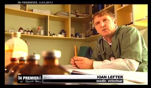 Doru Lefter