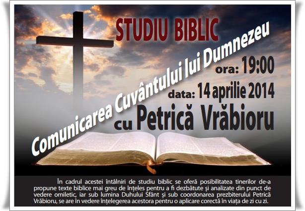 Petrica Vrabioru studiu