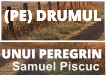 samuel piscuc blog