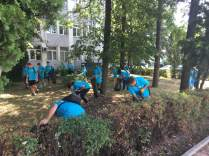 Upgrade Suceava - ecologizare 2