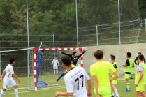 Campionatul de fotbal 2018053