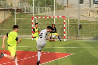 Campionatul de fotbal 2018060