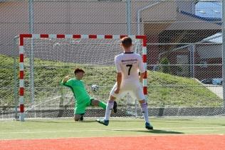 Campionatul de fotbal 2018113