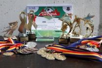 Campionatul de fotbal 2018122