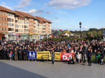 Miting pro referendum Suceava06